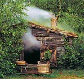 Деревенская баня своими руками фото